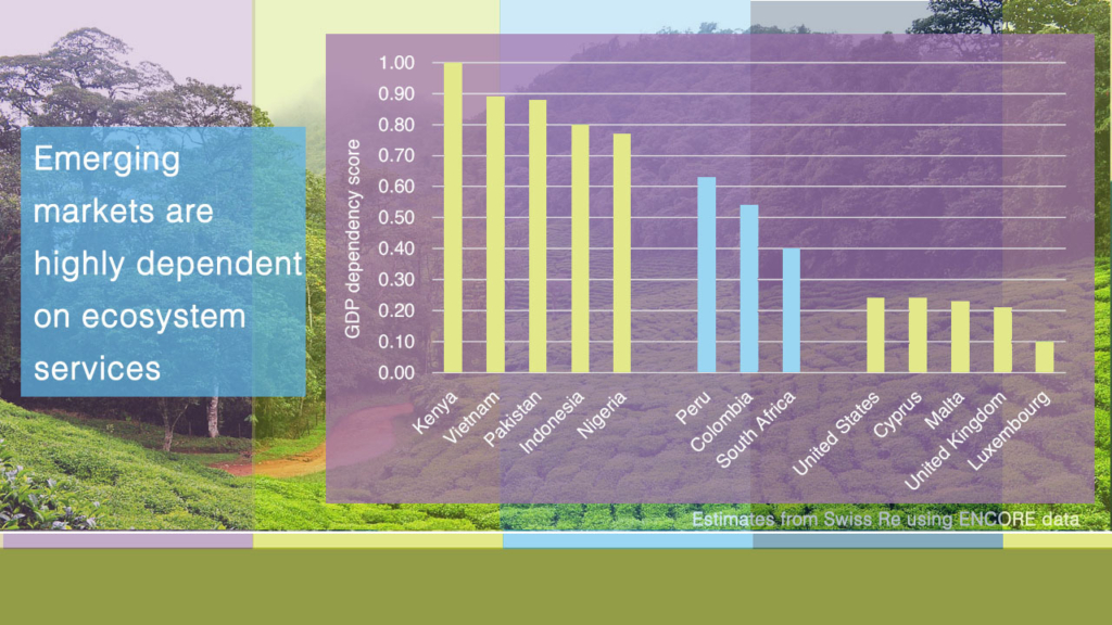 Emerging markets are highly dependent on ecosystem services